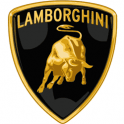 Fluid for transmission Lamborghini
